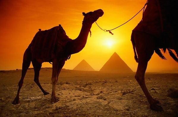 секреты поведения в Египте